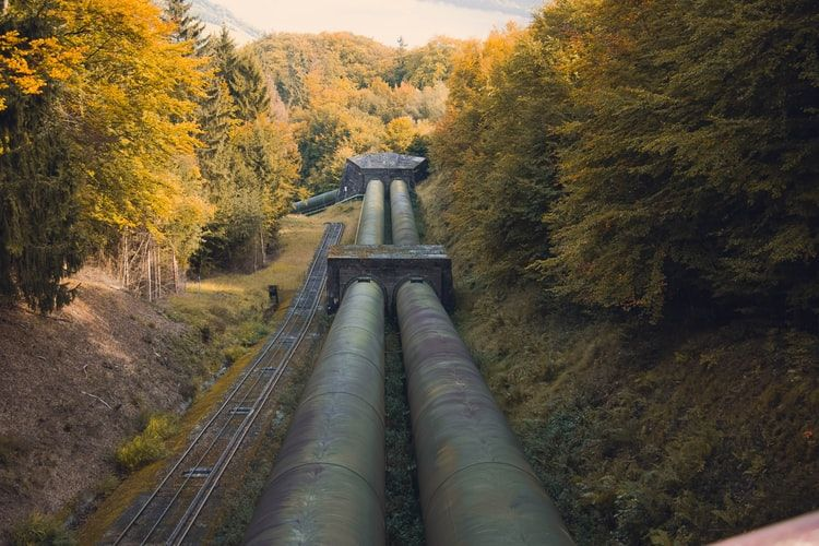 two solid pipelines in a forest running into the distance