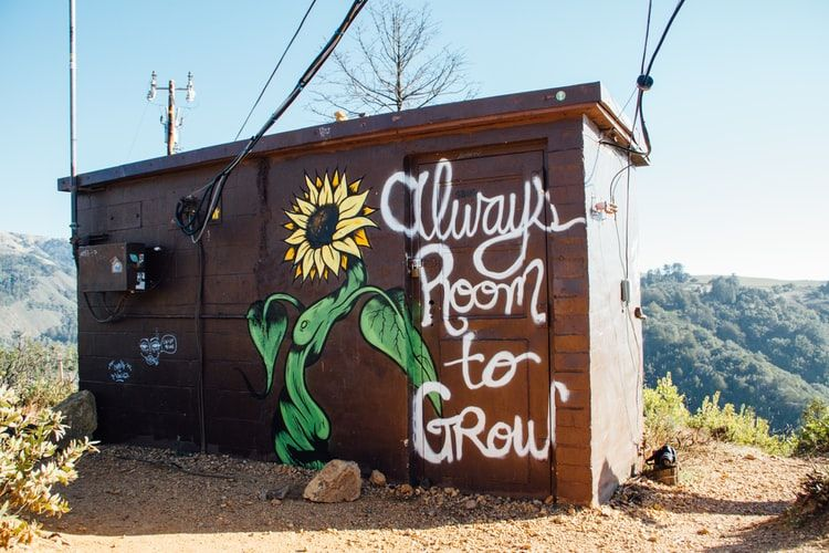 shed with a sunflower painted on it and the words Always Room to grow